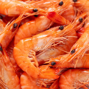 Crevettes de Madagascar bio